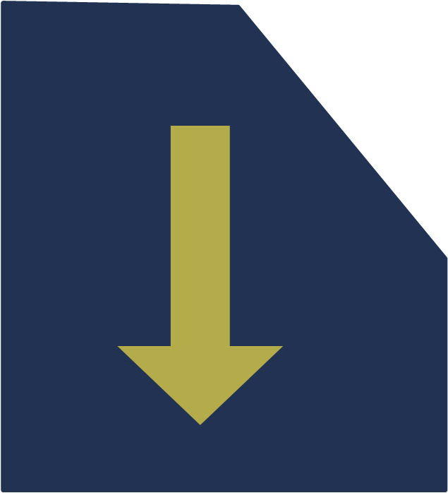 dowbload icon