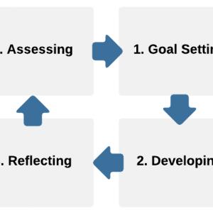 CDP proces summary