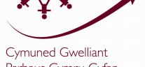 All Wales Continuous Improvement Community Annual Conference
