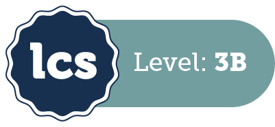 <strong>Level 3 Success</strong>